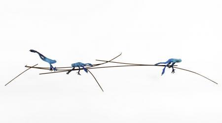 dardos blue