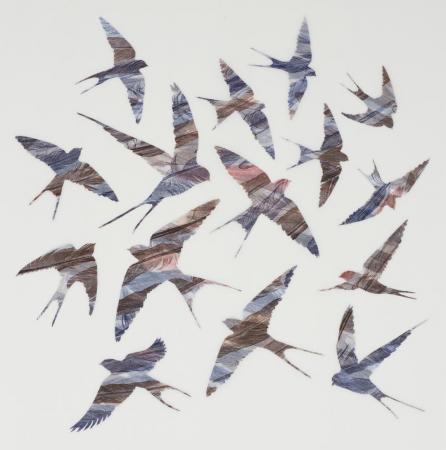 As-Swift-As-Swallows-Fly---Ruth-Thomas