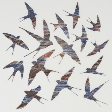 As Swift as Swallows Fly 2