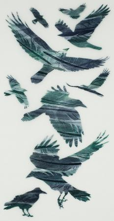 A-Loosely-Woven-Flock-of-Rooks---Ruth-Thomas