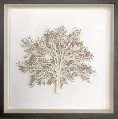 Pale Crystal Oak