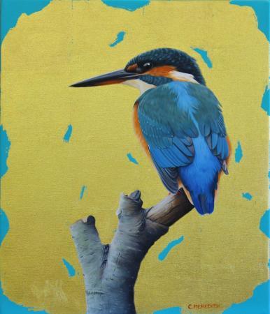 Vantage-Point-Kingfisher