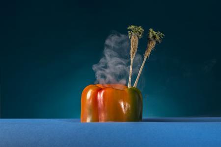 Peppertoa