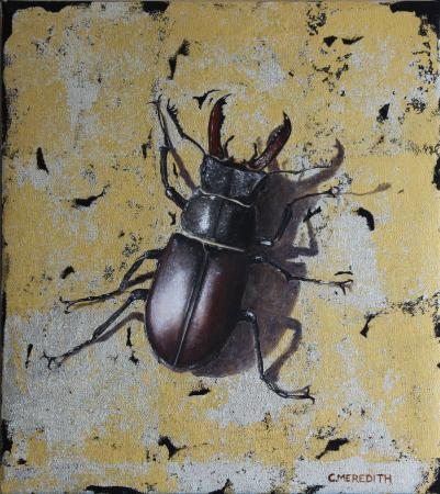 Stag-Beetle-10-x-9-oilwhite-gold-24ct-gold-leaf-£695