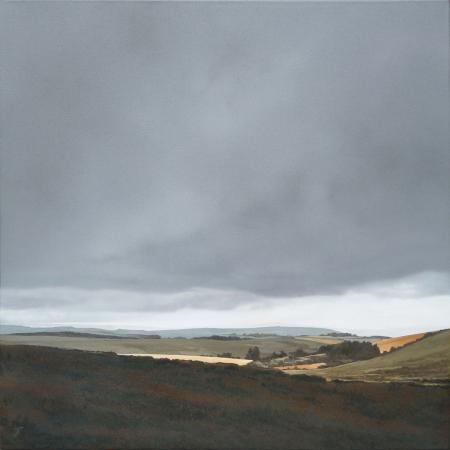 Dartmoor in low cloud 3