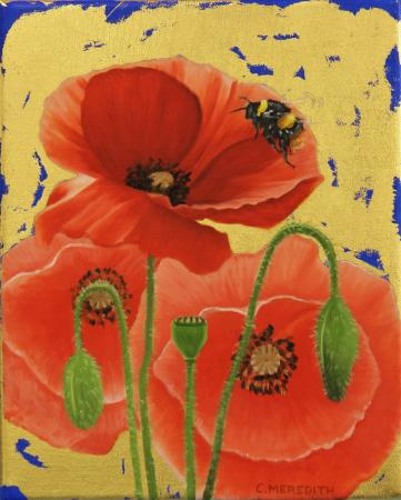 Poppies-Early-Bumblebee