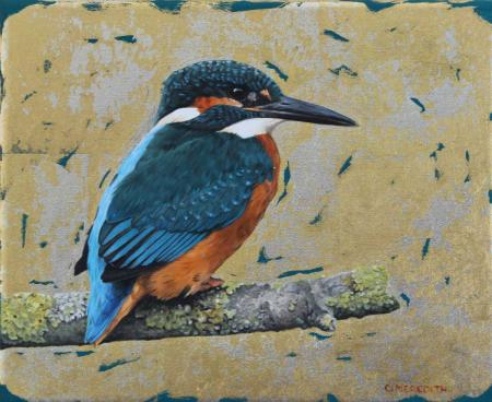 Kingfisher-study,-8-x10-oil,12ct-white-gold-